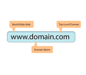 Published-blog--What-Is-Domain