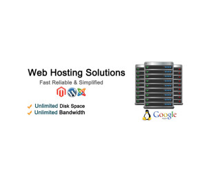 reseller-web-hosting-service-some-impending-benefits