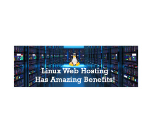 linux-web-hosting-benefits-a-quick-perspective