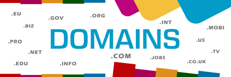 Domains concept image with text and related word cloud.